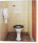 Dirty Public Toilet Wood Print by Richard Thomas