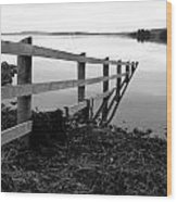 Disappearing Fence. Wood Print