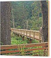 Discovery Trail Bridge Wood Print