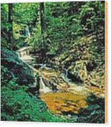 Distant Ozone Falls And Rapids - Summer Wood Print