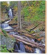 Distant Ozone Falls And Rapids In Autumn Wood Print