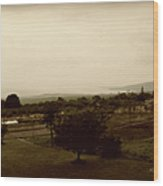Distant Shoreline Wood Print