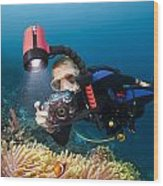 Diver And Anenome Fish Wood Print