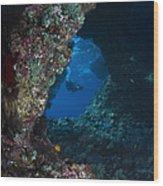 Diver At Boo Windows In Raja Ampat Wood Print