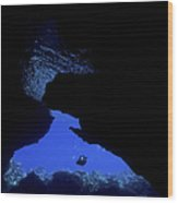 Diver With Lights Entering A Submerged Wood Print