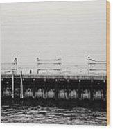 Diversey Harbor Wood Print