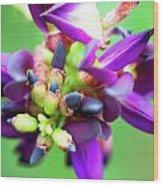 Divine Purple Wood Print