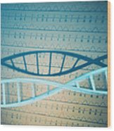 Dna And A Genetic Sequence Wood Print
