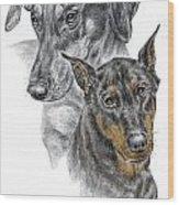Dober-friends - Doberman Pinscher Portrait Color Tinted Wood Print