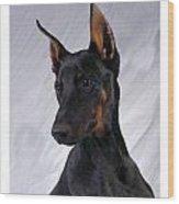 Doberman Pinscher 465 Wood Print