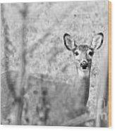 Doe A Deer. Wood Print