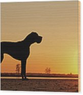 Dog Against Setting Sun Wood Print