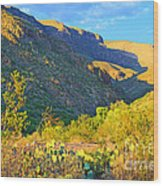 Dog Canyon Nm Oliver Lee Memorial State Park Wood Print