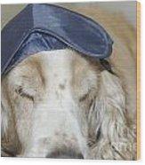 Dog With Sleep Mask Wood Print
