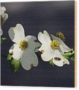 Dogwood Blossom - Beelightful Wood Print