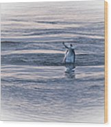 Dolphin Mullet Breakfast Wood Print