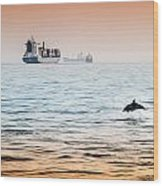 Dolphing Playing In The Sunset Wood Print