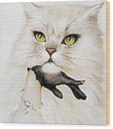 Domestic Cat, Conceptual Image Wood Print by Smetek
