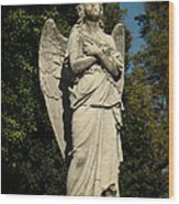 Don't Blink Wood Print