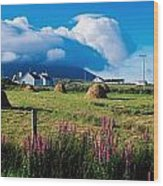 Dooega, Achill Island, County Mayo Wood Print