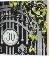 Door 30 Wood Print