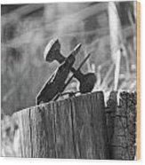 Door Protuberance Wood Print