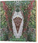 Doorway To Faeryland Wood Print