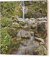 Dorothy Falls Near Lake Kaniere New Wood Print