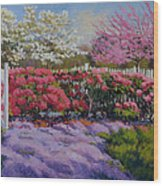 Dotti's Garden Spring Wood Print