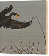 Double Crested Cormorant Coming Wood Print