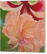 Double Hibiscus Wood Print