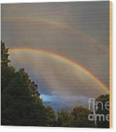 Double Rainbow Wood Print by Science Source