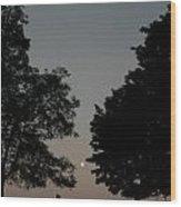 Doughton Park On The Blue Ridge Parkway Wood Print
