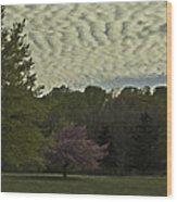 Douglassville Delight Wood Print