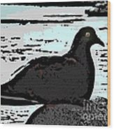 Dove At The Beach Wood Print