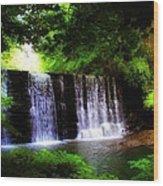 Dove Lake Falls Wood Print