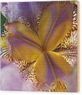 Down Into The Iris Wood Print