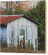 Down On The Farm - Old Shed Wood Print