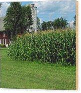 Down On The Wisconsin Farm Wood Print