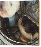 Down The Stairs Inside The Astronomical Clock Wood Print