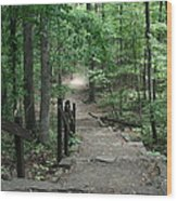 Down The Trail Wood Print by CGHepburn Scenic Photos
