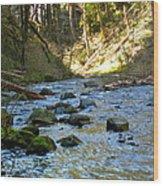 Downstream 2 Wood Print