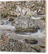 Downstream From Cascade Falls Wood Print