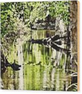 Downstream Reflections Wood Print