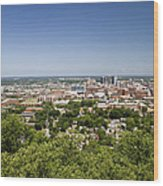 Downtown Birmingham Alabama On A Clear Day Wood Print