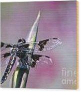 Dragonfly Bokeh Wood Print