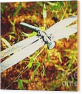 Dragonfly Droid Wood Print