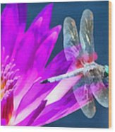 Dragonfly Lily Wood Print