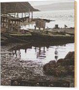 Drakes Bay Oyster Farm Wood Print