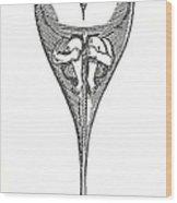 Drawing Of Homunculus, 1694 Wood Print